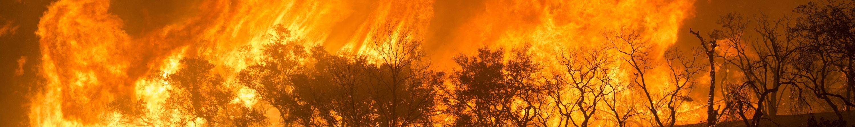 Bushfire, Active Blaze