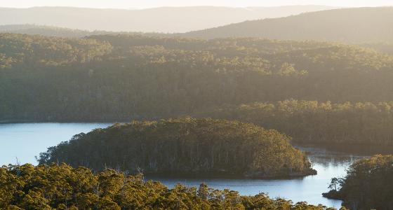 Halls Island on Lake Malbena, Walls of Jerusalem Nationa Park, Tasmania
